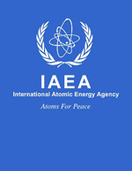 Consultancy Meeting on the Development and Implementation of a new CRP ''Options and Technologies for Managing the Back End of the Research Reactor Nuclear Fuel Cycle'', IAEA, Vienna, 15-18 July, 2014